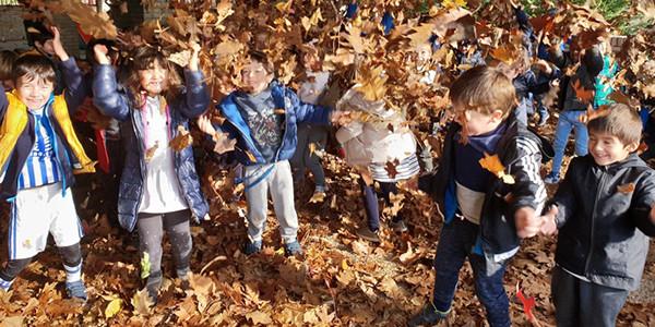 Jugando con las hojas