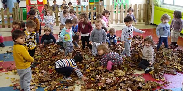 Fiesta de las hojas